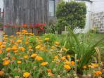 A Arribana house - garden flowers