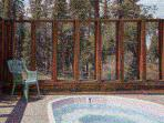 2 Community Hot Tubs - this one for stargazers, plus an indoor one!