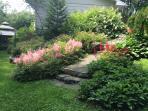 Jardin dans cour arrière.