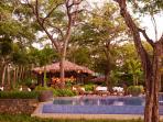 Your Beach Club Pool and Bar