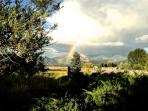 The front yard has great views of the Sangre De Cristo mountains.  Summertime views with the monsoon