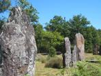 Visit the standing stones in the next village. Our very own 'Stonehenge'