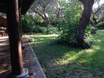 Portico in the Olive Grove