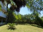 Garden/Jardim