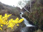 The stream near the house