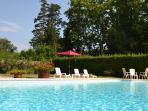 the  pool always!