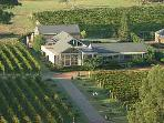 Aerial view of the Bed and Breakfast surrounded by Shiraz Vines