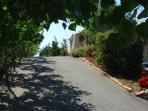 Entance road