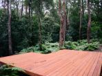Rainforest deck - yoga, meditation, ?