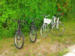 Possibilità di noleggio biciclette in loco