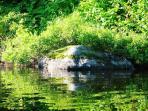 Lac Lamarre by Martin Riopel