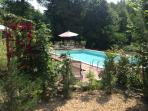 Large swimming pool with decking and grassed surround, overlooking private lawned and woodland area