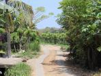 Road to Kundalini Beach