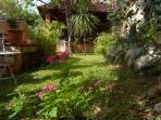 Sunny days in the garden :)