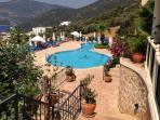 Tear drop shaped pool in beautifully kept landscaped gardens