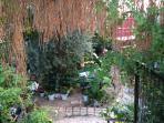 Botanic Bar gardens & treehouse -great cocktails