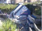 Blue Reef Aquarium makes a great day out for the children
