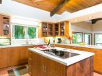 Gourmet kitchen with island range top.