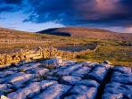 The Burren Region