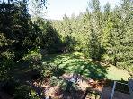 Hummingbird House, Forest Views, Rental Sleeping 6 People