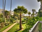 Tropical Paradise (414129)