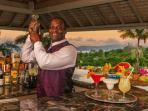 Silent Waters Villa bartender butler