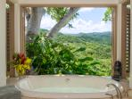 Silent Waters Villa guest suite 3 bathtub and view of mountains