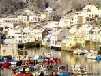 Photos of picturesque Polperro in Cornwall taken within 1-2 mins walk of Daisy Cottage