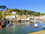 Photos of picturesque Polperro in Cornwall taken within 2-3mins walk of Curlew Cottage