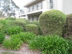 Hakea Garden Apartment