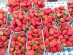 This February, enjoy the local strawberries - heart-shaped, bright red, sweet and juicy!