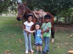 Riding lessons for kids on our calm horses