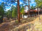 Flagstaff Urban Trail - Hiking and biking trail runs through backyard!!