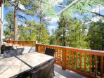 Rear deck dining area in the pines!
