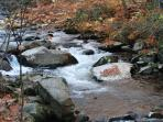 The creek along the hiking trail