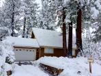 A-frame cabin surrounded with beautiful trees