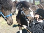 Rebekka with our horses. The sisters Hekla and Slaufa.