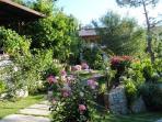 gardens while walking towards the villa