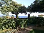 View from giardino