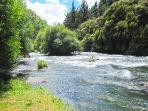 Beautiful Tarawera River opposite the motel
