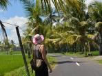 Walk the quiet roads of Mas. Jalan Rapuan river and rice field walk, 5 mins from Angel House.
