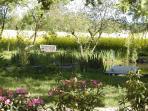 Teich im großen Park der 'Alten Ziegelei'.