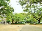 Minami Horie Park - 3 min walk