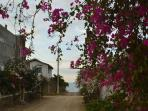 Beautiful and friendly neighborhood