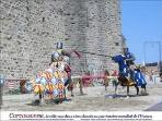 jousting contest in Cacassonne half an hour away