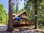'The Cottage in the Woods' Lovely 4BR Nevada City Cabin on 1.5 Wooded Acres w/Large Private Deck - Near Scotts Flat Lake, Historical Sites, Bike Trails & More!