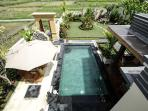 private garden and pool in the middle of rice field
