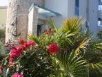 Rose, gerani ed altri numerosi fiori circondano la struttura