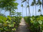 Side Walk to the beach