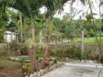 Villa Gardens Overlooking Botanical Gardens